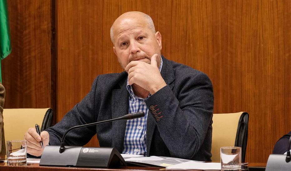 Un momento de la comparecencia del consejero Javier Imbroda en la comisión.