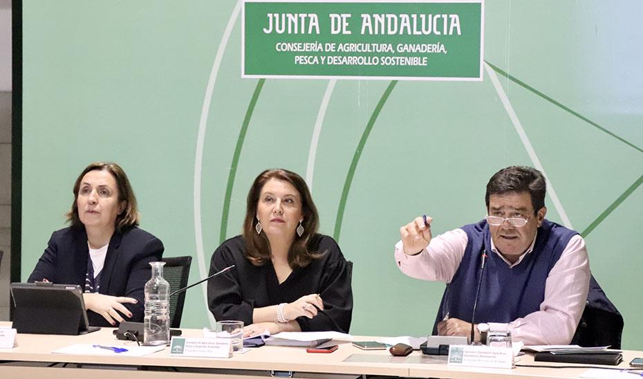 La consejera de Agricultura, Ganadería, Pesca y Desarrollo Sostenible, Carmen Crespo, hoy en la Mesa de Interlocución Agraria.