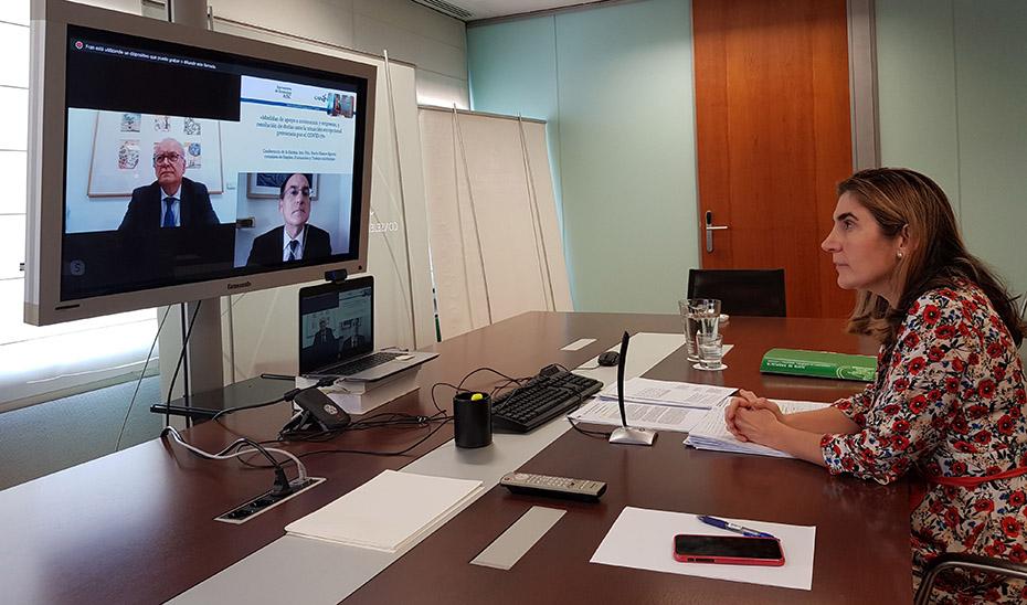 La consejera Rocío Blanco durante la videoconferencia.