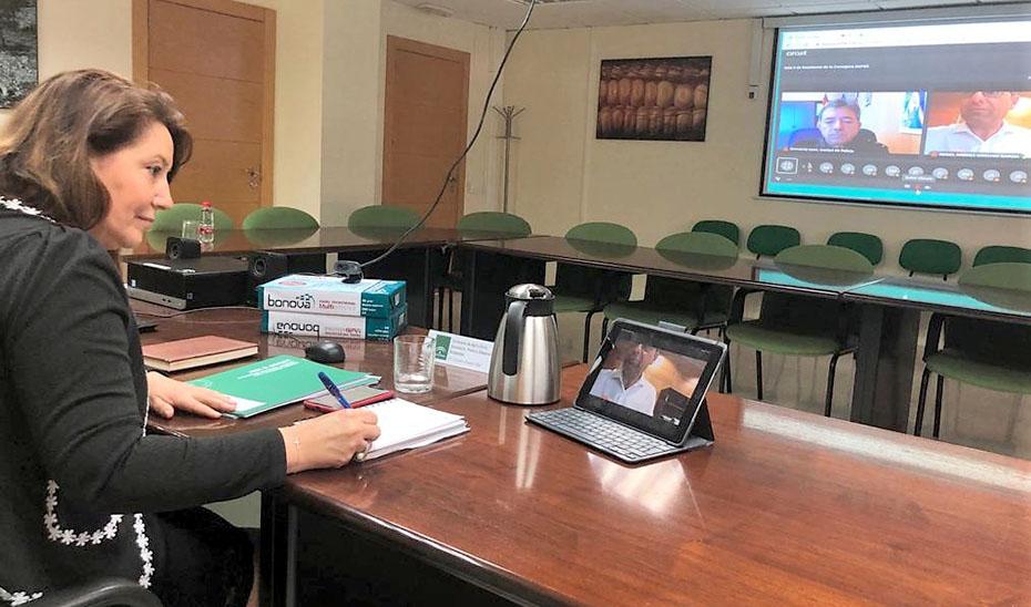 La consejera Carmen Crespo, durante la reunión telemática con el Comité Asesor del Plan Infoca.