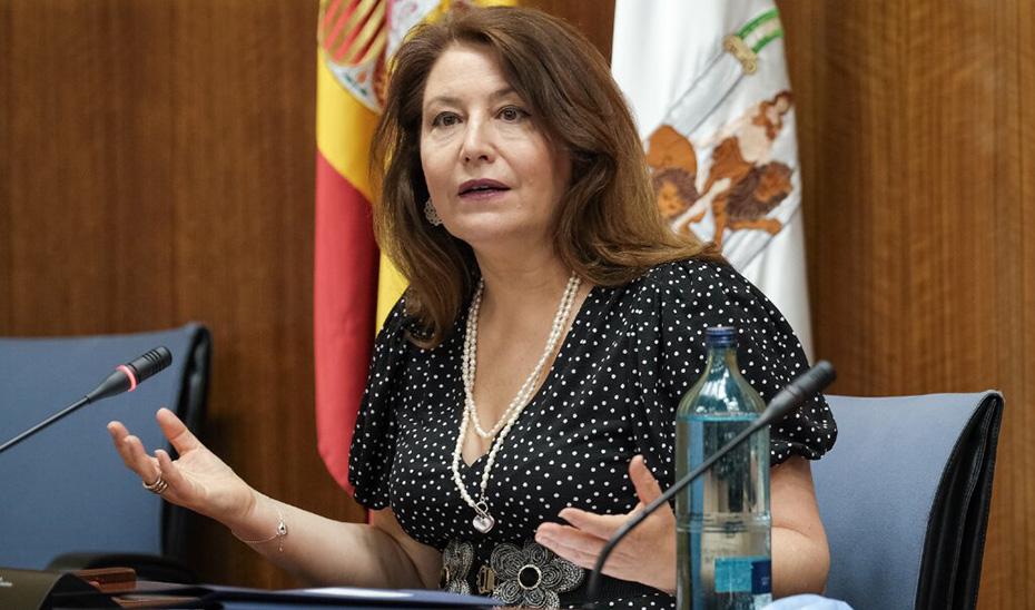 La consejera Carmen Crespo, durante la comisión parlamentaria.