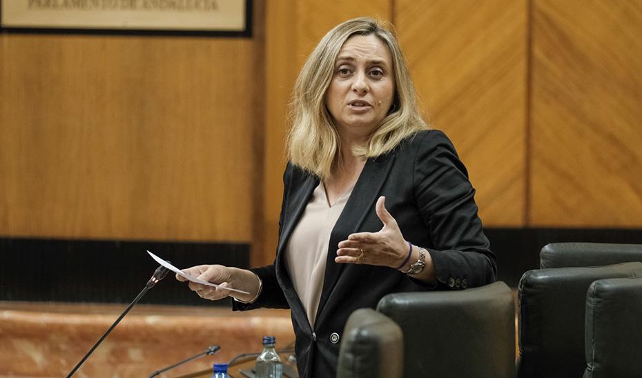 La consejera Marifrán Carazo, durante la sesión plenaria de este jueves.