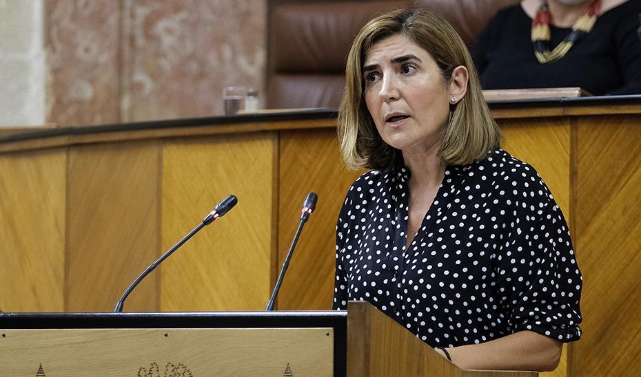 El Parlamento convalida el decreto ley de la Iniciativa AIRE