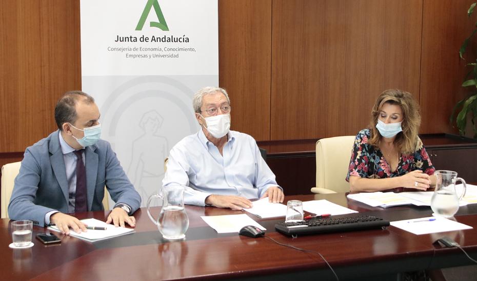 Rogelio Velasco mantiene una reunión telemática con participantes en proyectos de investigación contra el Covid-19.