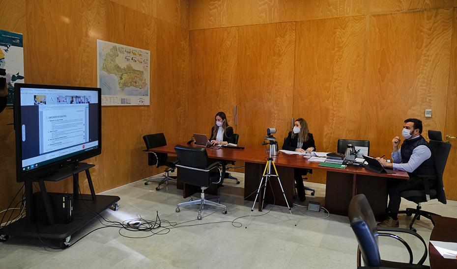 El viceconsejero de Turismo presidió el Consejo Andaluz de Turismo.