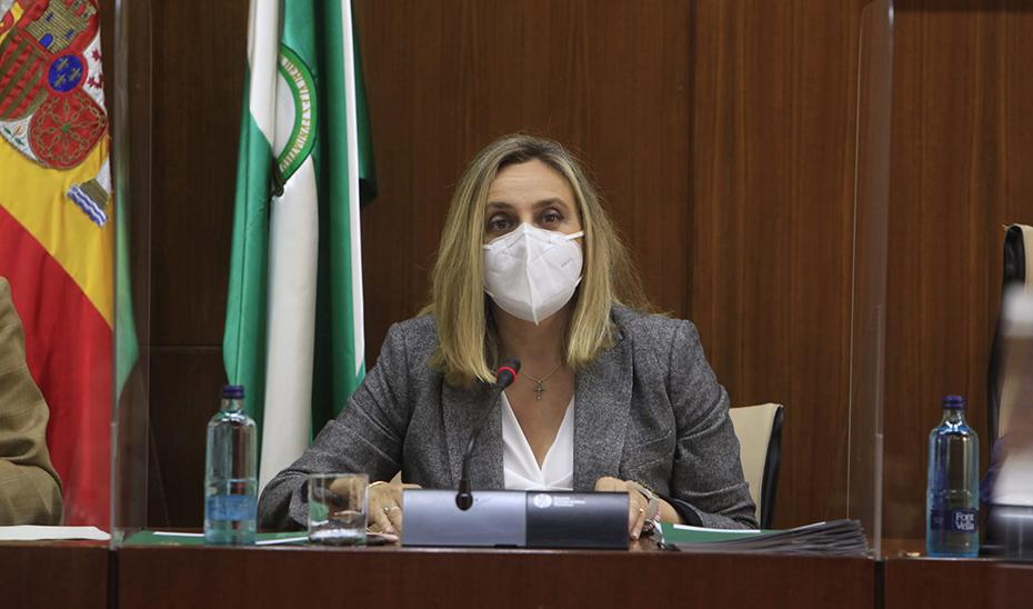 El consejero de Fomento, Infraestructuras y Ordenación del Territorio, Marifrán Carazo, este miércoles en la comisión parlamentaria.