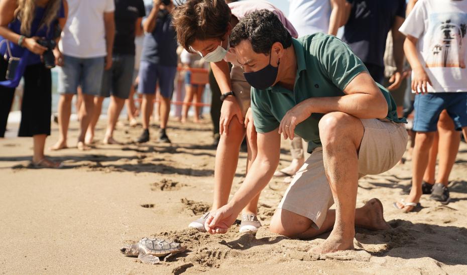 Intervención de Juanma Moreno en una suelta de tortugas boba