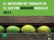 El Mercado de Trabajo en el Sector Agrario Andaluz 2011