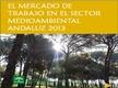 El Mercado de Trabajo en el Sector Medioambiental Andaluz 2013