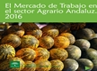 El Mercado de Trabajo en el Sector Agrario Andaluz 2016