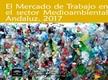 El Mercado de Trabajo en el Sector Medioambiental Andaluz 2017