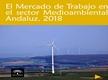 El Mercado de Trabajo en el Sector Medioambiental Andaluz 2018