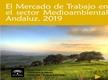 El Mercado de Trabajo en el Sector Medioambiental Andaluz 2019
