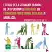 Estudio de la situación laboral de las personas egresadas en formación profesional reglada en Andalucía Promoción 2010-2011