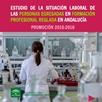 Estudio de la situación Laboral de las personas egresadas en Formación Profesional reglada en Andalucía. Promoción 2015-2016