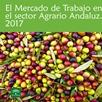 El Mercado de Trabajo en el Sector Agrario Andaluz 2017