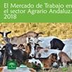 El Mercado de Trabajo en el Sector Agrario Andaluz 2018