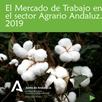 El Mercado de Trabajo en el Sector Agrario Andaluz 2019