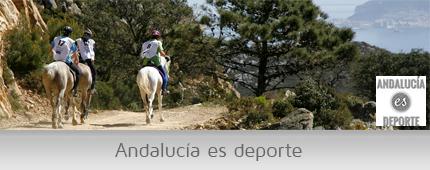 Banner Andalucía es deporte