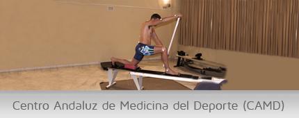 Banner Centro Andaluz de Medicina del Deporte (CAMD)
