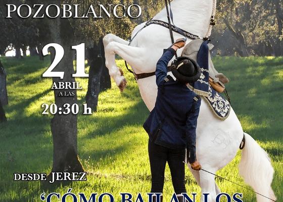La Real Escuela Andaluza del Arte Ecuestre lleva su espectáculo a Pozoblanco