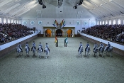 La Real Escuela Andaluza del Arte Ecuestre incrementa sus exhibiciones con motivo de la festividad del Pilar