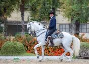La Real Escuela Andaluza del Arte Ecuestre participa en el espectáculo oficial del Salón Internacional del Caballo