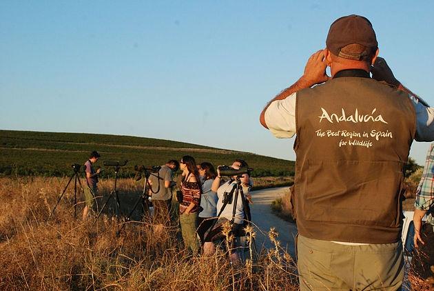 Andalucía se presenta en el Delta Birding Festival como destino líder y con mayor oferta de turismo ornitológico