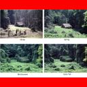 Muestra Imagen Four seasons