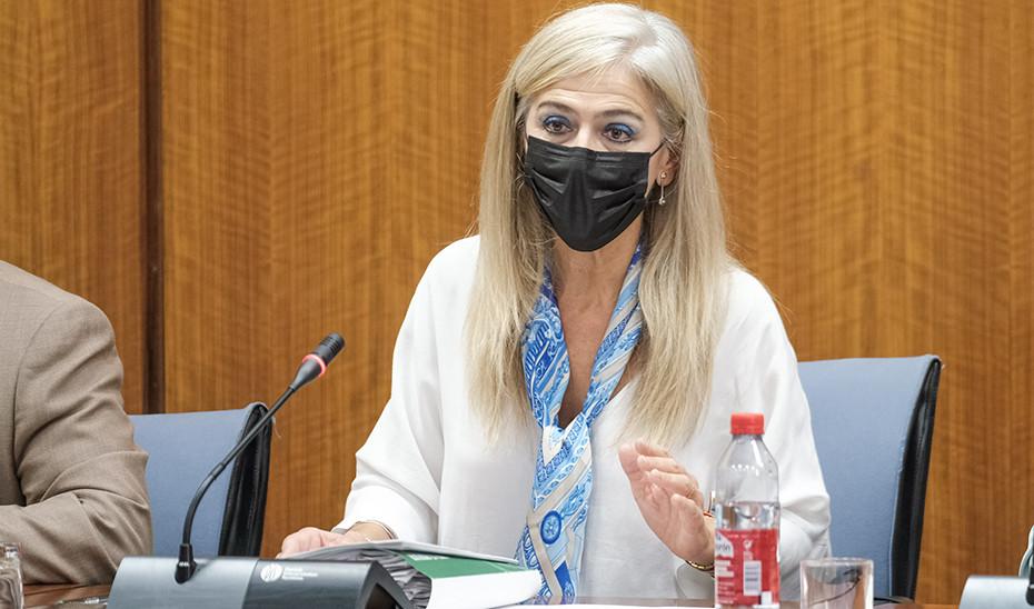 La consejera de Cultura, Patricia del Pozo, en un momento de su comparecencia en la comisión de Cultura del Parlamento
