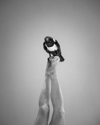 Representación de 'Là' de Camille Decourtye y Blaï Mateu Trias