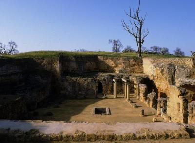 Anfiteatro y Necrópolis romana de Carmona
