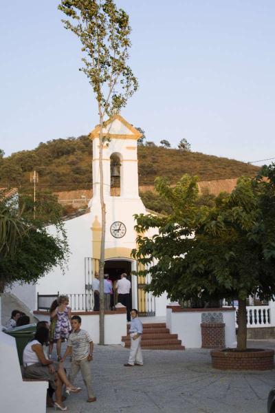 Chopo plantado enfrente de la iglesia Autor: Erica Bredy Fecha: 2009 Fuente: Instituto Andaluz del Patrimonio Histórico