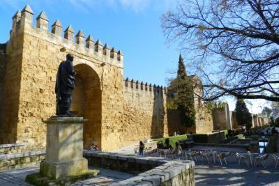 Puzzle de la Puerta de Almodovar
