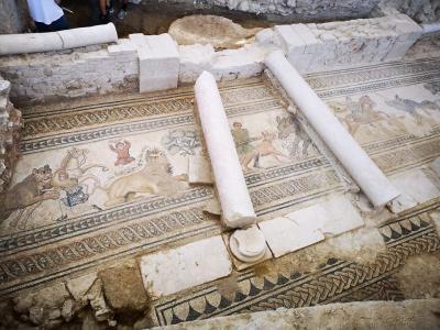 Villa Romana de Salar