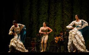 © Agencia Andaluza de Instituciones Culturales. Fotógrafa: Lucía Rivas