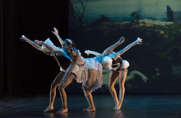 Imagen del espectáculo - El lago de los cisnes (3D)