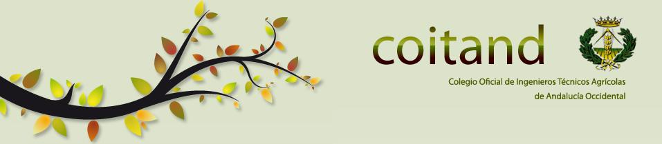 Logo de coitand