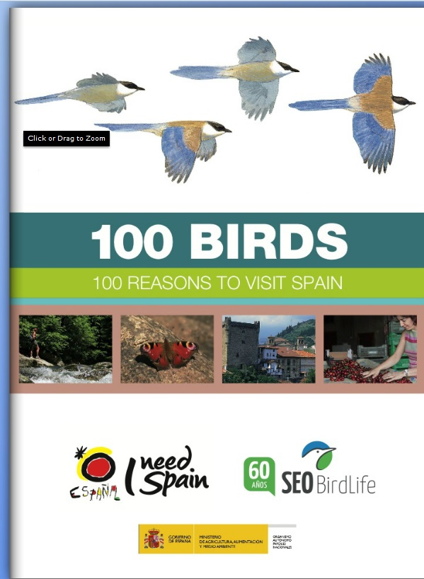 100 birds (100 birds.jpg)