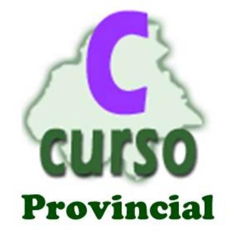 Curso provincial