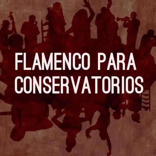 flamenco_conservatorios