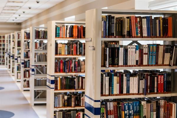 Fondo ( bookcase-books-bookshelves-256541.jpg )