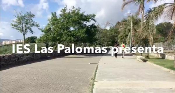IES LAS PALOMAS