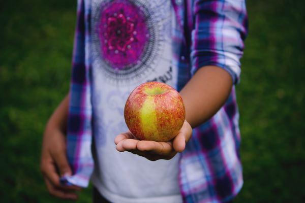 Plan Escolar de Consumo de Fruta y Hortalizas