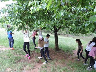 imagen XI Encuentro de Alumnado de la Red Andaluza de Ecoescuelas
