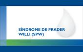 Portada_25 preguntas sobre SPW