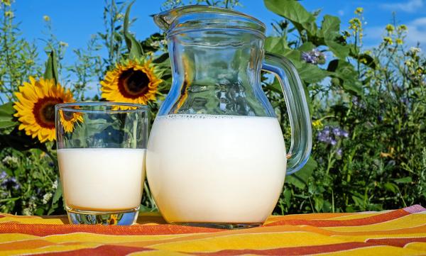 Plan Escolar de Consumo de Leche y Otros Productos Lácteos