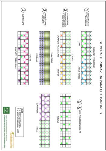 Diagramas de siembras de primavera para seis bancales