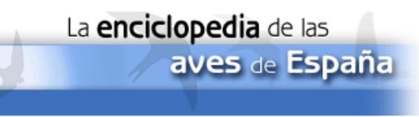 La Enciclopedia de las Aves de España