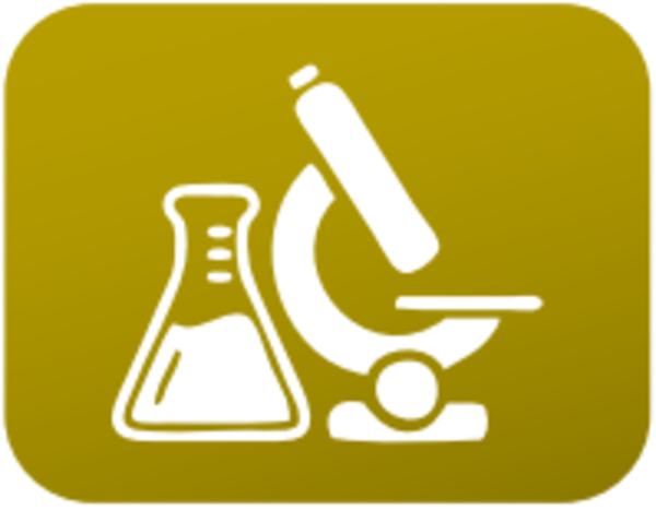 Familia Química (07 Quimica.png)